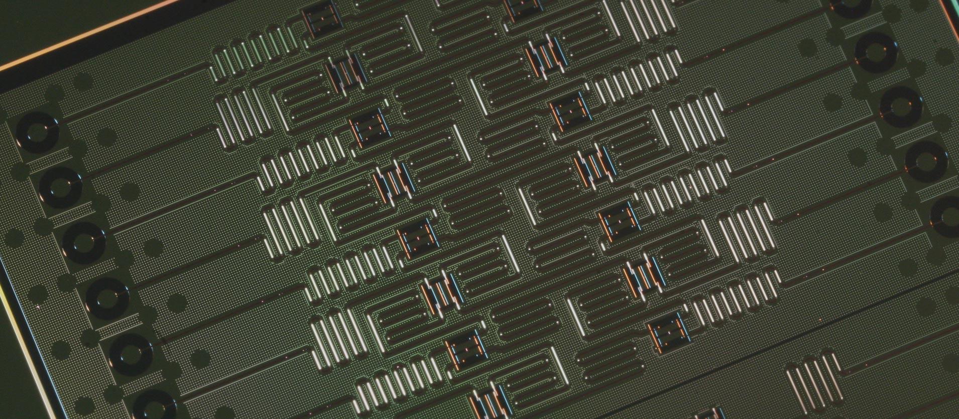dotQuantum.io | Conosciamo un processore quantistico Cover